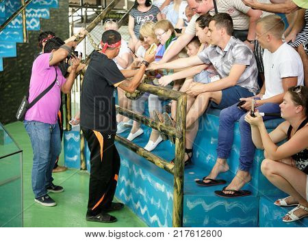 PattayaThailand- November 202017: Show of snakes. Spectators with a fright photographed with a python in Pattaya Snake Show