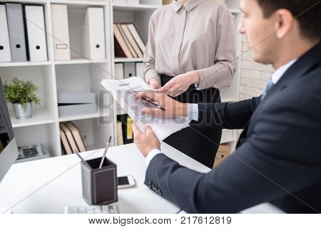 Back view portrait of young businessman reading contract  held by his secretary sitting at desk in modern office