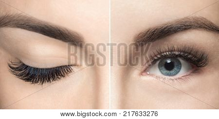 Eyelash  extension procedure close up. Beautiful Woman with long lashes in a beauty salon. Eyelash extension.