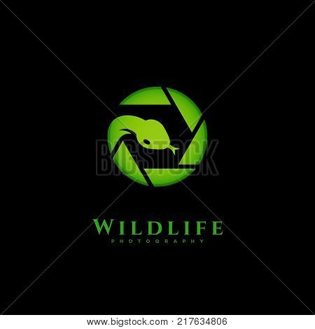 Wildlife photography logo template design. Vector illustration.