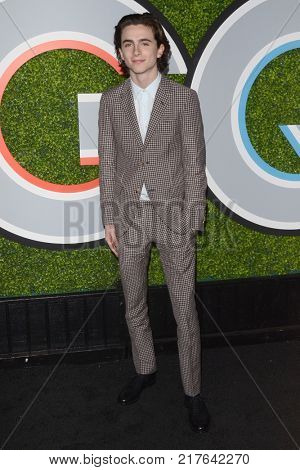 LOS ANGELES - DEC 7:  Timothee Chalamet at the 2017 GQ Men of the Year at the Chateau Marmont on December 7, 2017 in West Hollywood, CA