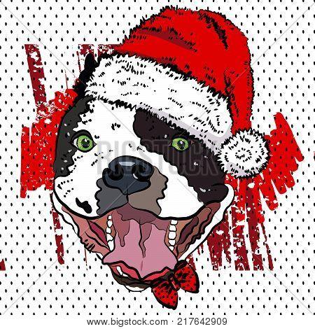 Bulldog in portrays santa claus. Vector illustration.