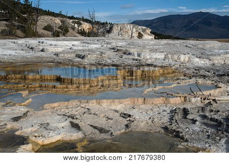 Sinter Terraces at Mammoth Hot Springs Yellowstone National Park Wyoming USA