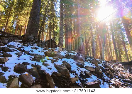 Unexpected light snow in Lake Tahoe California while on a scenic hike.