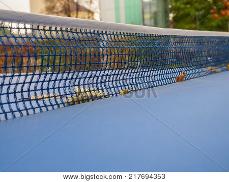 Mesh on table for table tennis (ping-pong) with fallen leaves autumn in the park.