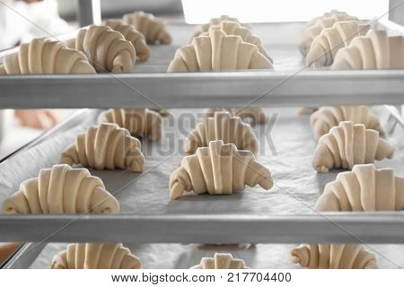 Raw crescent rolls on shelving in bakery