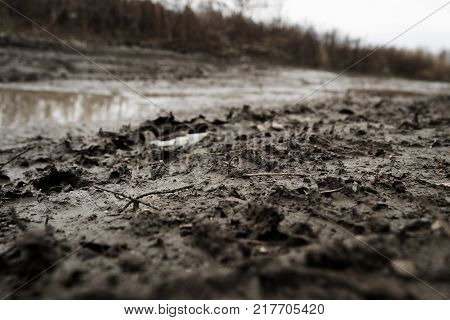 Dirt background. Dirt texture. Dirty road. Natural background. Grunge soil. Grunge earth. Grunge background. Autumn background. Soil background. Earth background.