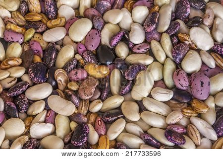 Beautiful mixed colorful beans as background. Raw colorful bean texture. Food photo