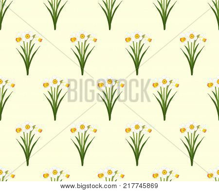 Daffodil - Narcissus Seamless on Ivory Beige Background. Vector Illustration.
