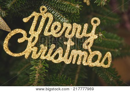 Merry Christmas gold gleaming inscription on a fir tree. Green New Year or Christmas background.Close up. poster