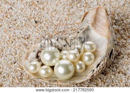 Multiple pearls in oyster sea shell over sand background
