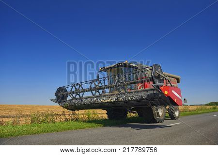 Giant red wheat harvester combine machine is going to work on gold wheat fields in summer. August wheat harvesting in Russia, Europe. Rye harvester on gold wheat fields, road, blue sky. Agriculture