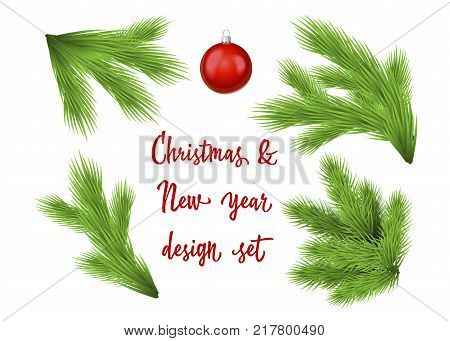 Set of green lush spruce branches. For Christmas and New Year disign. Isolated on white vector illustration