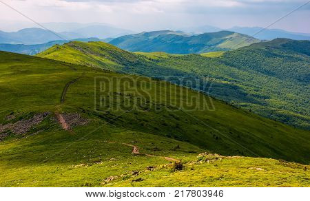 Path Along The Carpathian Dividing Ridge