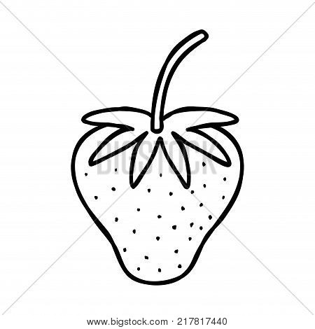 line delicious strawberry fresh and organic fruit vector illustration