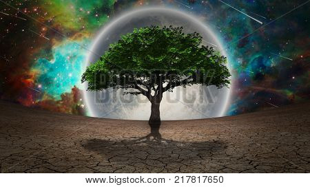 Green tree in arid land. Full moon in the vivid sky. 3D rendering. Some elements credit NASA.