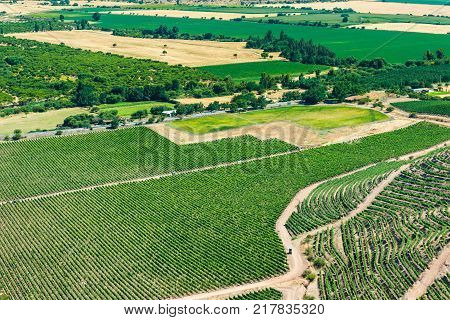 Panoramic view of a vineyard at Colchagua valley Chile