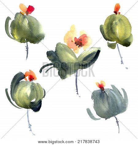 Watercolor and ink botanic illustration of flower buds. Sumi-e u-sin oriental painting. Decorative element for greeting card or invitation.