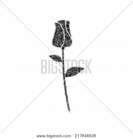 Rose sign illustration. Vector. Black icon from many ovelapping circles with random opacity on white background. Noisy. Isolated.