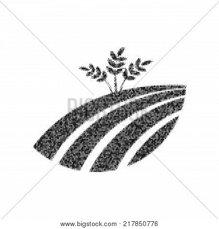 Wheat field sign. Vector. Black icon from many ovelapping circles with random opacity on white background. Noisy. Isolated.