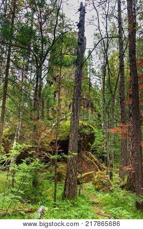 Pillar Firstborn. Central pillars of Russian reserve Stolby Nature Sanctuary. Near Krasnoyarsk