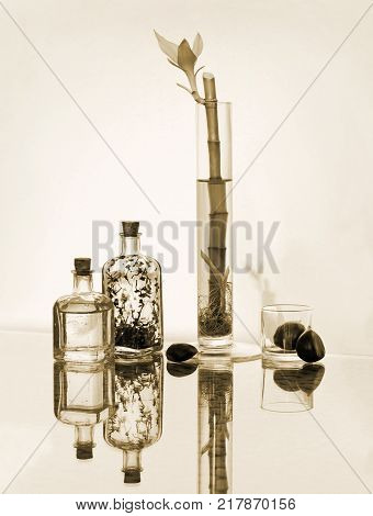 Beautiful bamboo in transparent vase chestnuts and small vintage glass botlles. High key still life in sepia tone. Choose a focal point copy space for write..