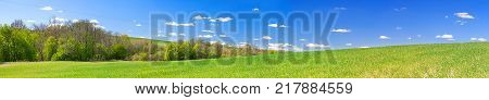 beautiful spring rural landscape with field and blue sky a panorama. agricultural field panoramic view. agriculture panorama
