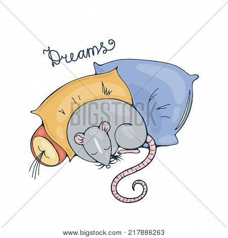 Illustration with a cheerful rat sleeping on a pillows. Vector image.