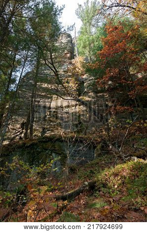 rock formations and forest during autumn at petenwell bluff in juneau county necedah wisconsin