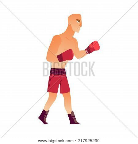 Young, bald Caucasian male boxer in boxing gloves, shirtless, ready to fight, flat vector illustration isolated on white background. Side view, flat style portrait of young Caucasian boxer fighting