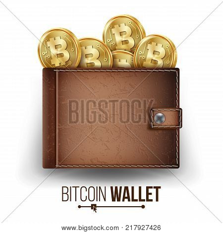 Bitcoin Wallet Vector. Brown Color. Abstract Technology Bitcoin. Cryptography Finance Coin Icons. Full Wallet. Modern Wallet. Bitcoin Gold Coins. Isolated Illustration