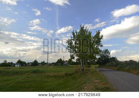 Korolyovka (Korolivka village) - village, Nikolaevsky village council, Novomoskovsk district, Dnepropetrovsk region, Ukraine.