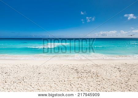 Caribbean sea coastline. Beautiful tropical beach view
