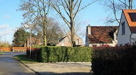 Neighborhood houses in Belgium. A tree-lined modern residential street on a cul-de-sac in a typical upscale neighborhood in Belgium with houses in Flemish style