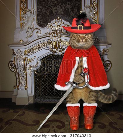 The Cat Musketeer In A Red Cloak, A Hat With A Feather And Boots Holds A Sword Near A Fireplace In T