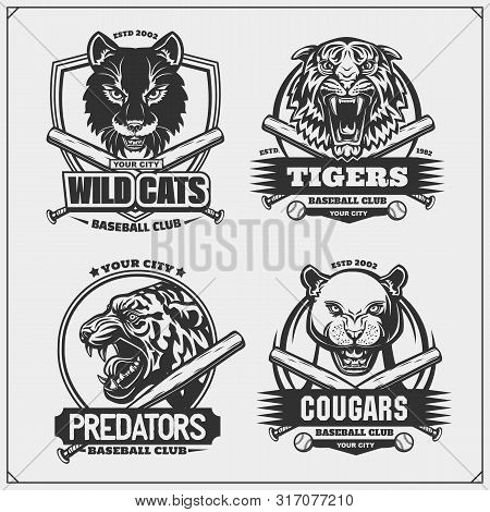 Set Of Baseball Emblems, Badges, Logos And Labels With Tiger, Cougar And Wildcat. Print Design For T