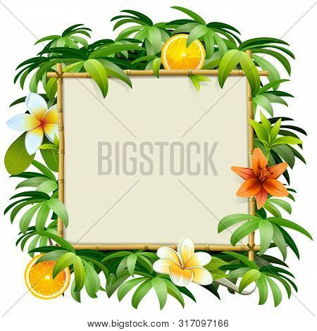Vector Bamboo Frame With Tropical Flowers Isolated On White Background