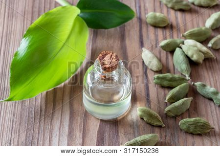 A Bottle Of Essential Oil With Whole Cardamon Seeds And Leaves