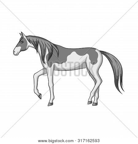 Isolated Object Of Horse And Steed Sign. Collection Of Horse And Western Vector Icon For Stock.