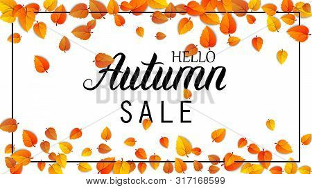 Hello Autumn Sale Lettering Banner. Special Offer Discount Poster With Fall Golden Leaves. Autumn Se