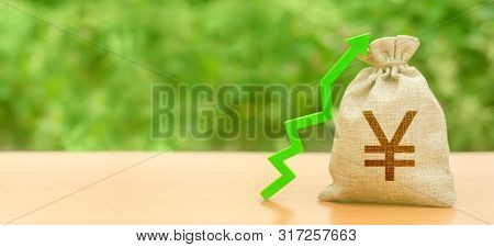 Money Bag With Yen Or Yuan Symbol And Green Up Arrow. Increase Profits And Wealth. Growth Of Wages.