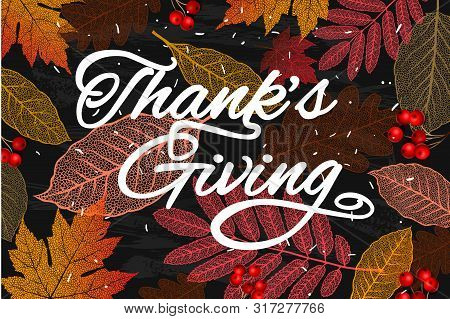 Thanksgiving Holiday Banner With Congratulation Text. Autumn Tree Leaves On Chalkboard Background. A