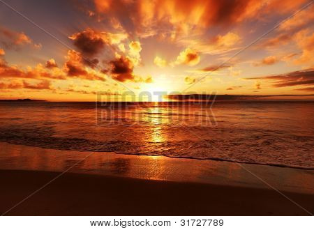sunset beach big and beautiful singles Dreamy sunset photo prints, beach prints room together and is beautiful and of samba to the sea's prints at the sunset shop but i found myself.