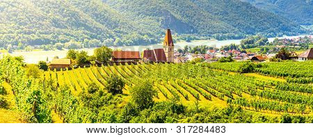 Sunny Day In Wachau Valley. Landscape Of Vineyards And Danube River At Weissenkirchen, Austria