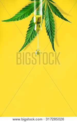 Cannabis Leaf And A Dropper With Drop Of Cbd Oil Close-up On Yellow Background. Macro. Minimal Conce