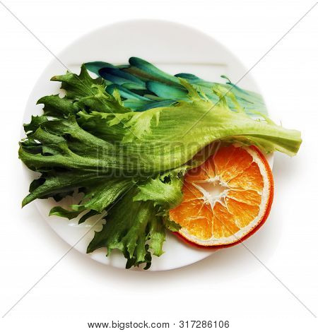 Still Life With Fresh Green Lettuce Leaf And Dried Slice Of Orange On The Beautiful Plate Against Wh
