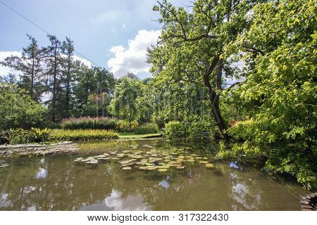 English Country Pond In Summer. Lush Green Foliage Surrounding Lake. Beautiful Landscape Image Of Tr