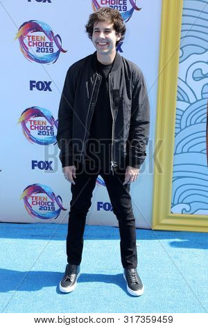 LOS ANGELES - AUG 11:  David Dobrik at the Teen Choice Awards 2019 at Hermosa Beach on August 11, 2019 in Hermosa Beach, CA