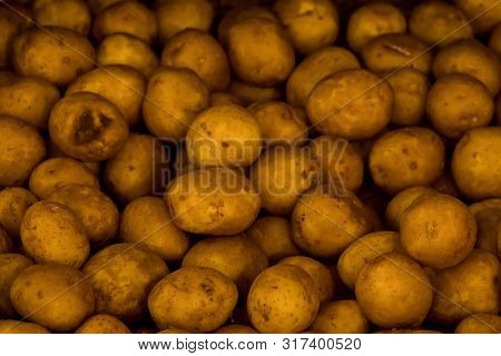 Fresh Organic Potato Stand Out Among Many Large Background Potatoes In The Market. Heap Of Potato Ro
