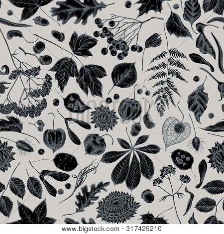 Seamless Pattern With Hand Drawn Stylized Rowan, Rowan, Acorn, Buckeye, Fern, Maple, Birch, Maple Le